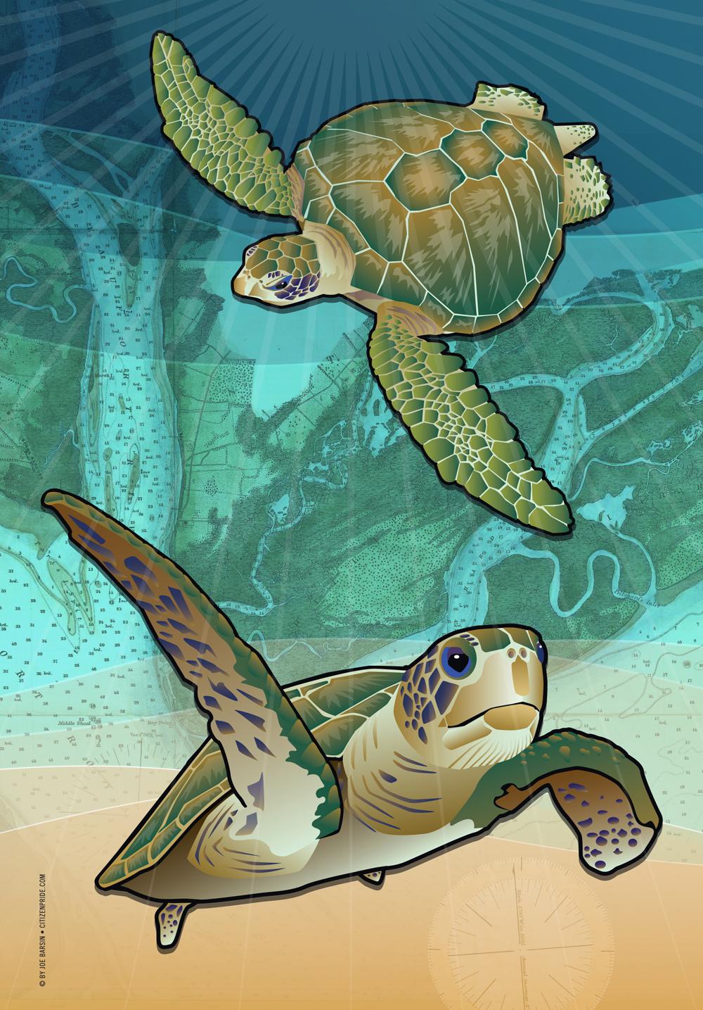 Atlantic's Sea Turtles