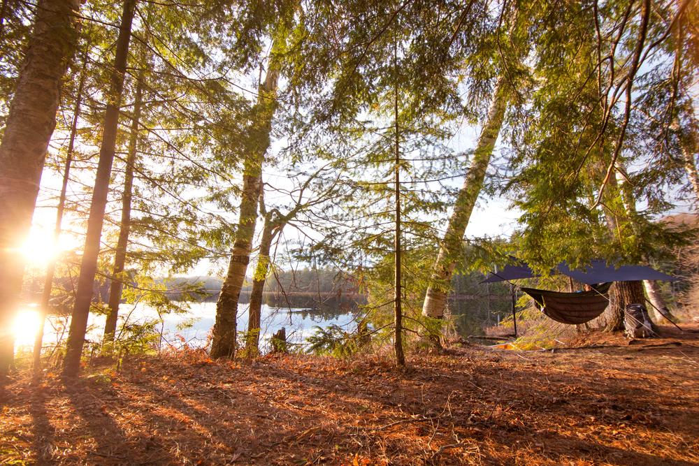 LinkedRingPhotography_ENO_Adirondacks_004.jpg