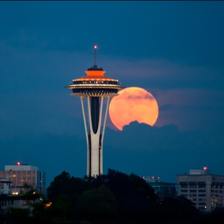 why-does-the-moon-look-so-big.jpg