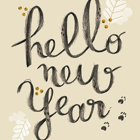 ATTENTION!!! NEW YEARS EVE SPECIALS AHEAD!! Come in New Years Eve and choose between these special offers:  10% off a blow dry  20% off a color or haircut  We're here to help you look your best while you bring in the new year!  Call today while there's still openings! (949) 493-7432  #shineon #hair #hairstylist #danapoint #hairdresser #california #sanclemente #irvine #socal #newyear #specials #savemoney