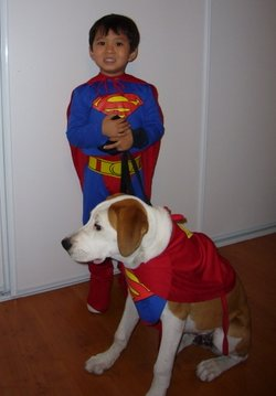 Krypto%20Costume.jpg