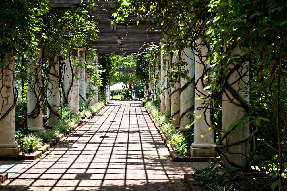 Botanical Garden NC_edited-1.jpg