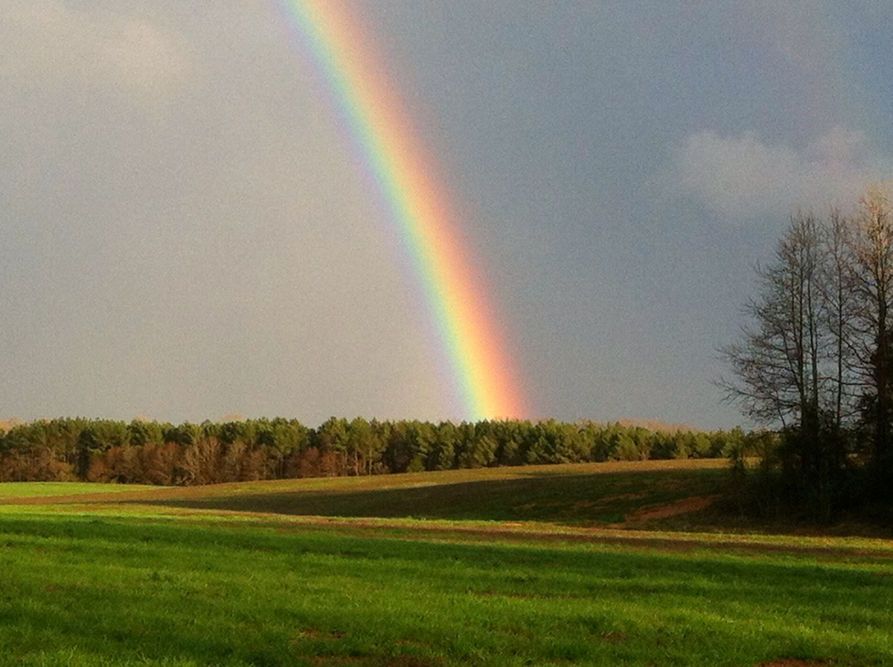 photo taken with my iphone in the outskirts of Monroe, NC-rainbow