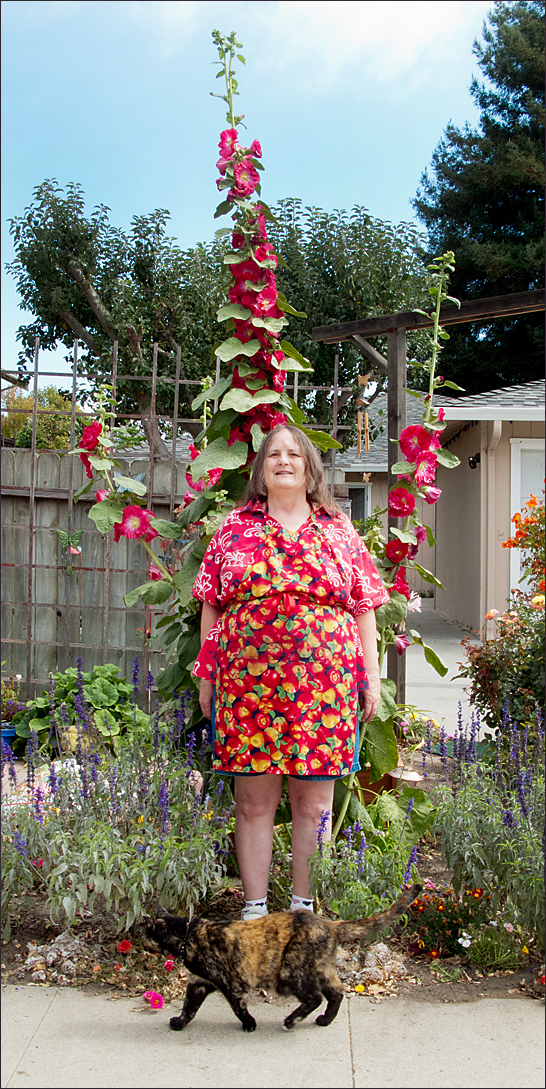 Mildred with prize hollyhock and cat, 2011, Santa Cruz