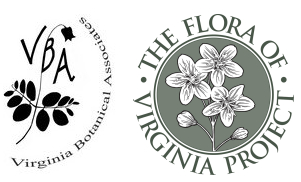 Digital Atlas of the Virginia Flora and the Flora of Virginia Project