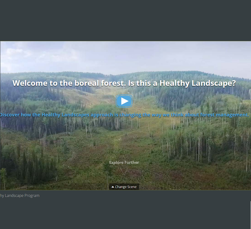 Lessons from Nature interactive website, developed for the Healthy Landscapes program. Click the image to view the site.