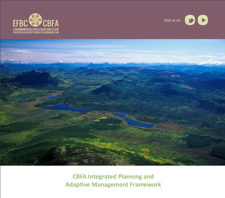 Provided Project Management for the development of the Canadian Boreal Forest Agreement (CBFA) Integrated Planning and Adaptive Management Framework