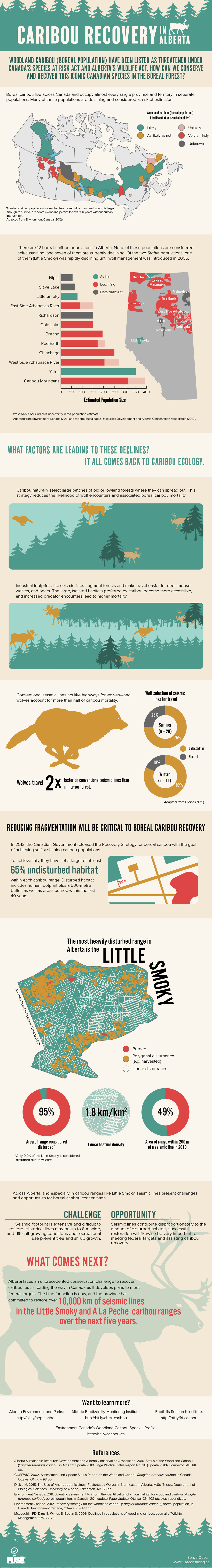 This infographic illustrates the challenges facing boreal caribou in Alberta, including a high density of linear features and high predation rates by wolves. Learn how the province of Alberta is addressing this problem as part of their draft range plan for the Little Smoky and A La Peche caribou ranges.