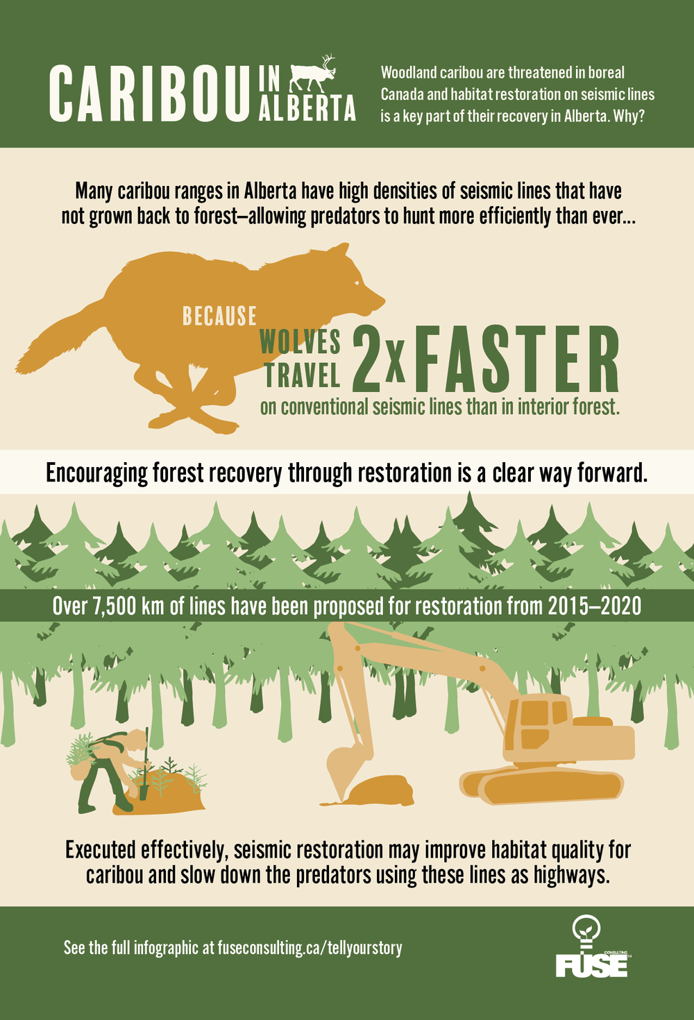 Caribou Infographic