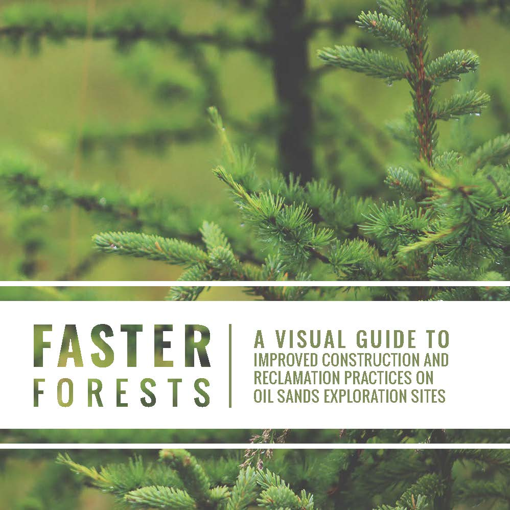 FasterForests_VisualGuide_Final_Page_01.jpg