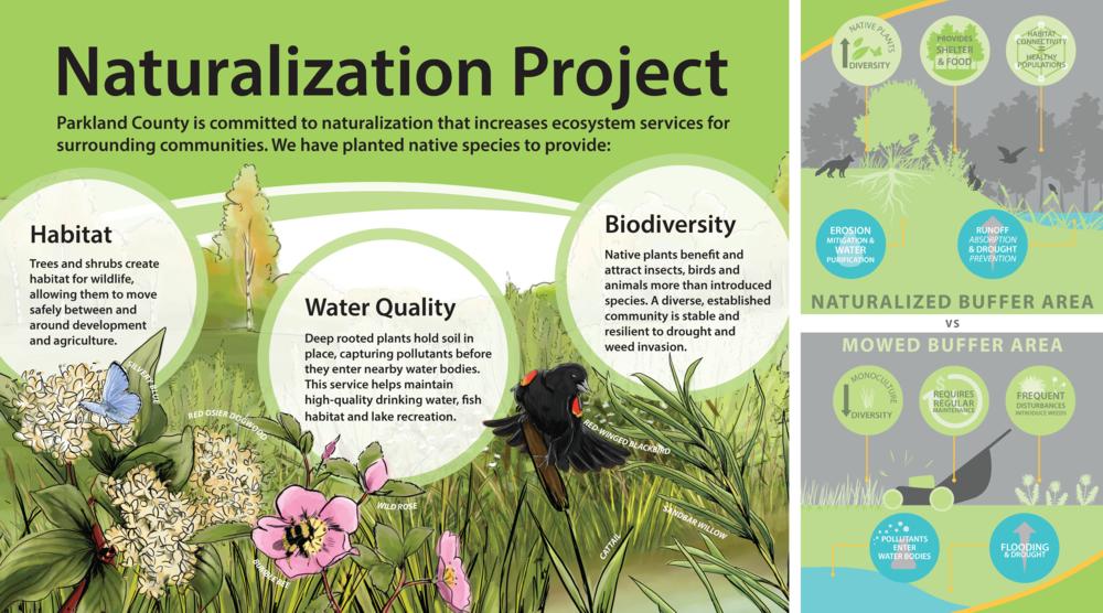 Parkland Naturalization Sign for web.png