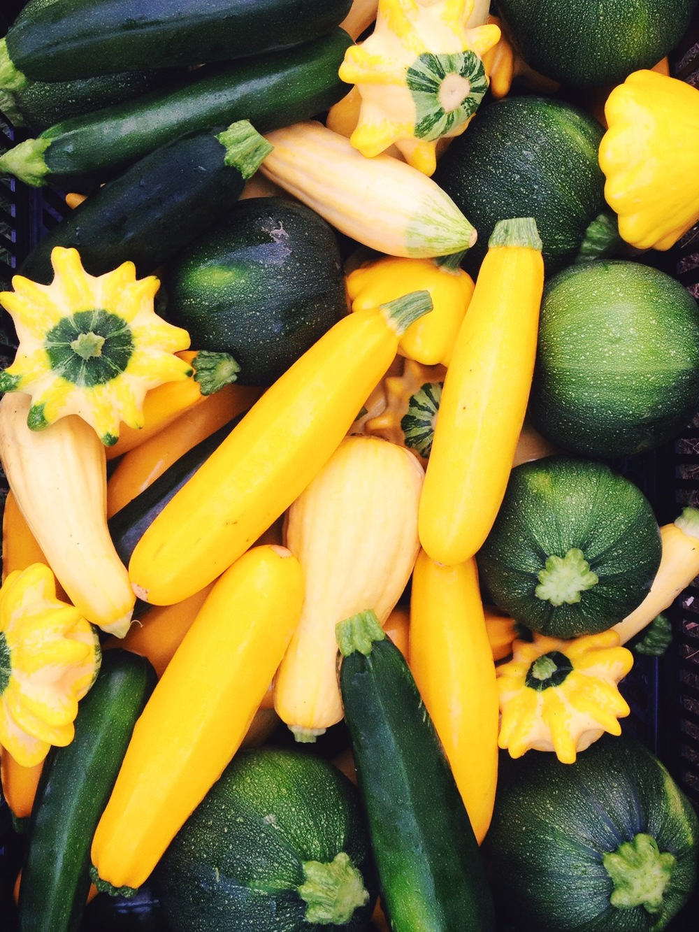 Summer squash has arrived! We planted 8 Balls, Flying Saucers, Saffrons, Zephyrs, and Patty Pans in addition to the standard zucchini and yellow squash because... they're awesome?