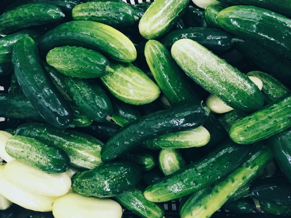 Picklers and Salt + Pepper cucumbers