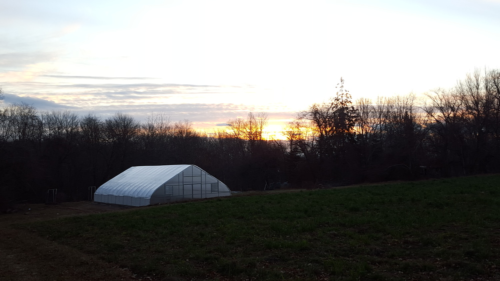 Sunrise over our new favorite building on the farm.