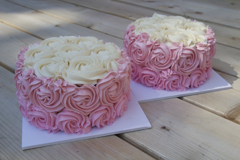 Twin Girls' Smash Cakes