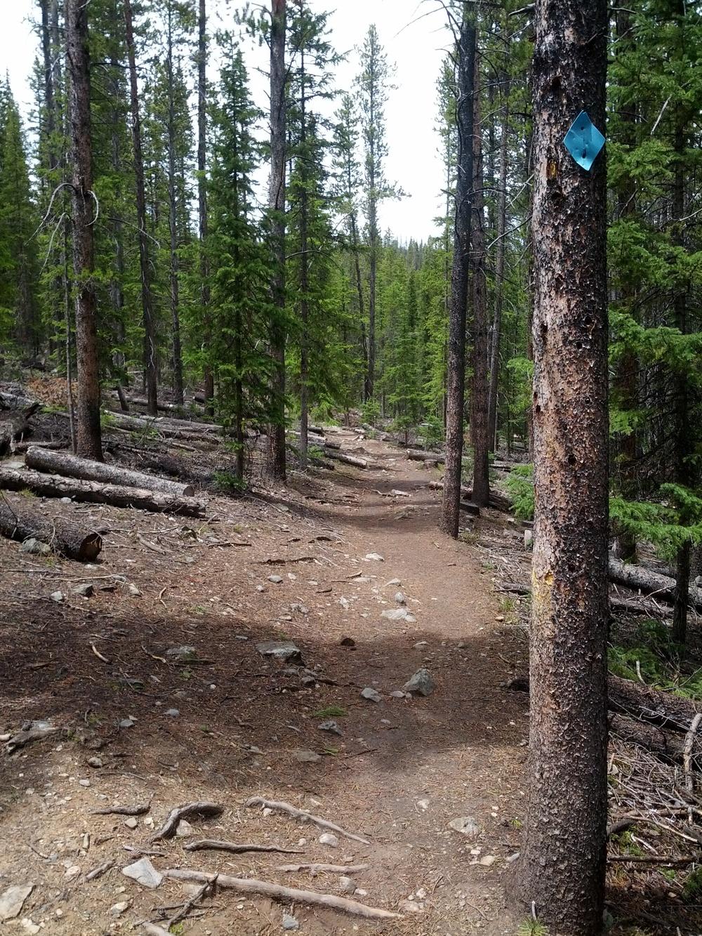 Peaks Trail Breckenridge Colorado