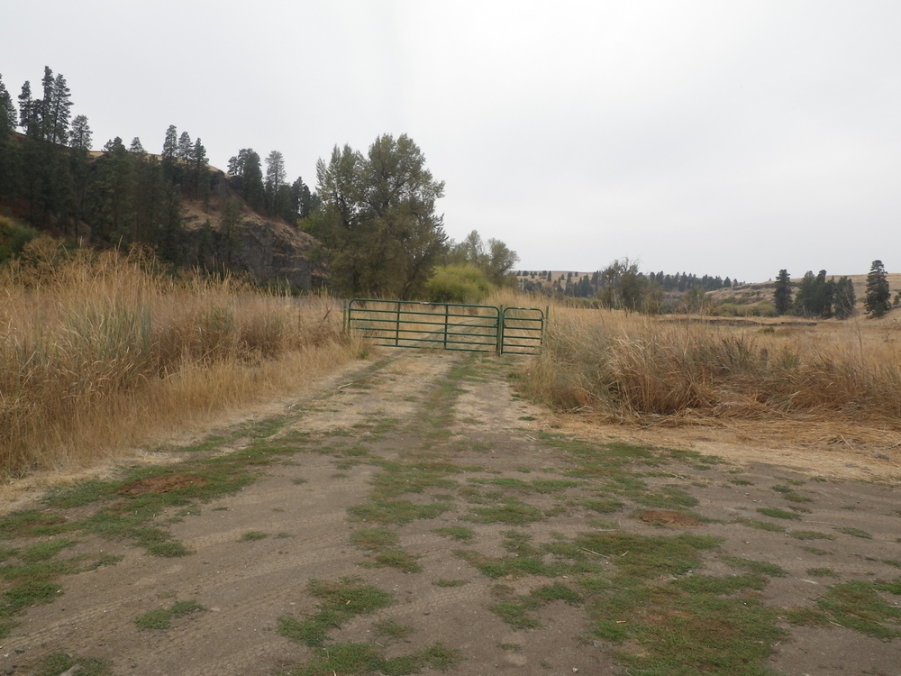 The first gate and the trail beyond. Parking is to the right. It's wide enough to pull a U-turn or fit multiple vehicles.