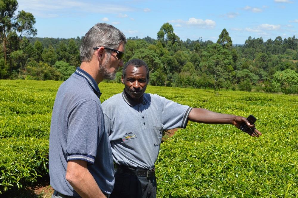 Josaphat Tuwei teaching me about tea growing.