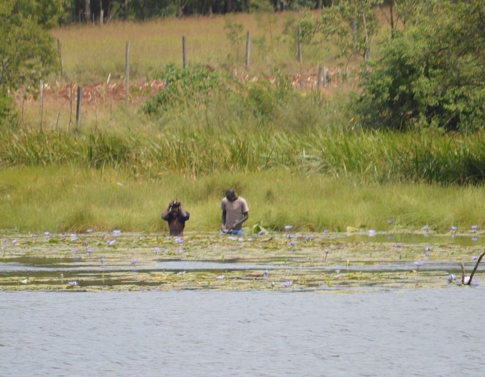 Fisherman in the lake. Soy, Uasin Gishu County.