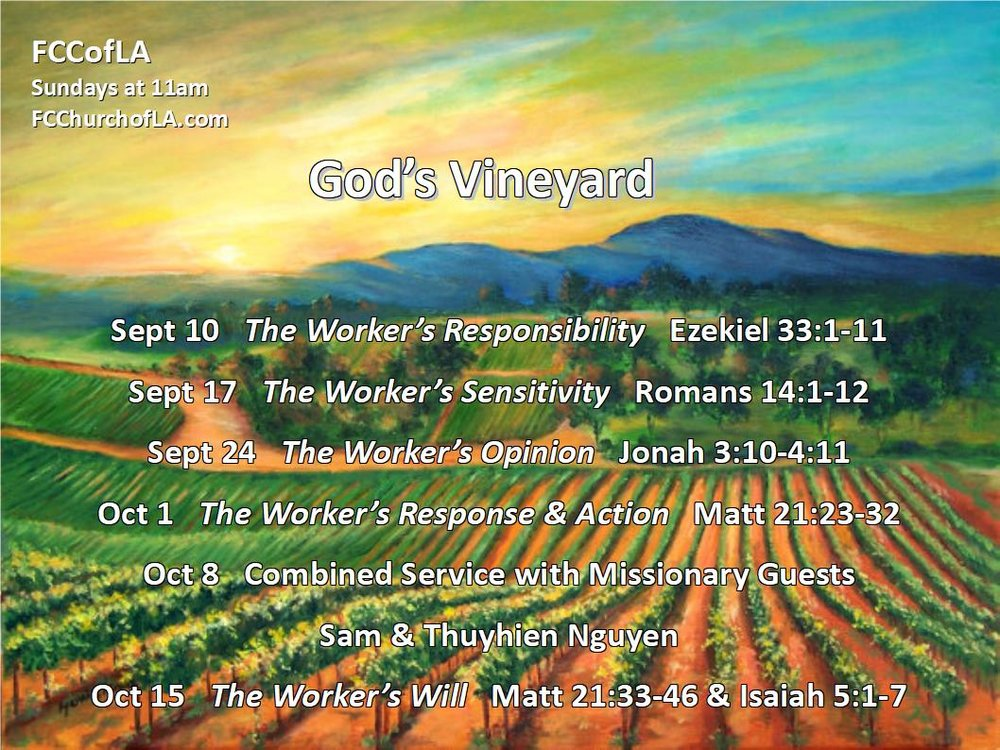 God's Vineyard.jpg