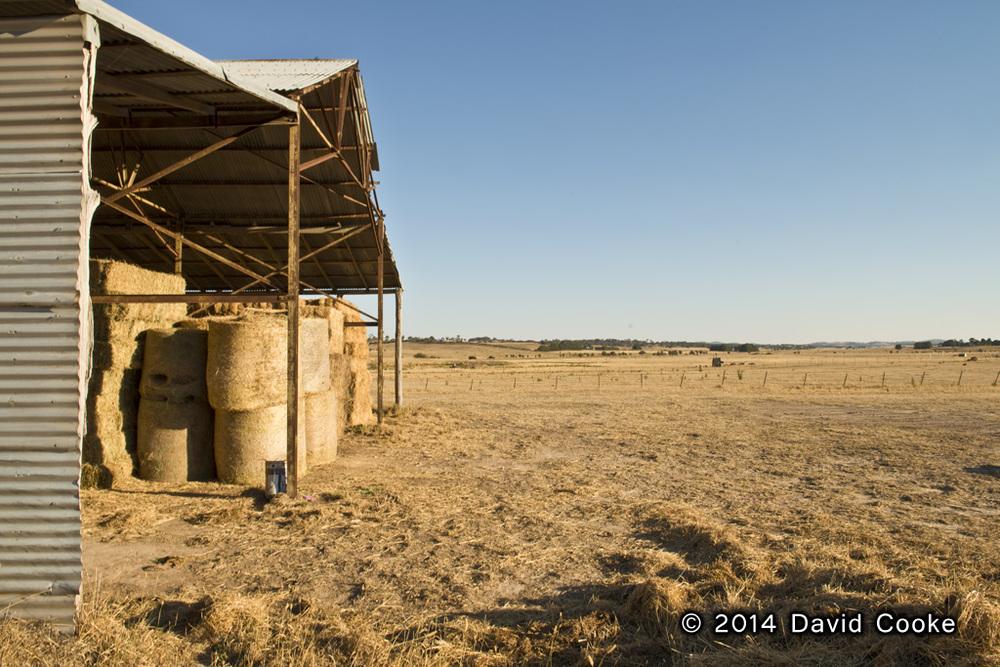 DCooke - Outback Summer - 2014.jpg