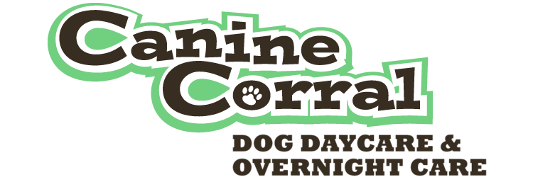 Canine Corral - Dog Daycare and Overnight Care in San Jose, CA