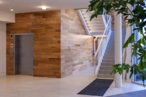 sustainable-teak-wood-wall-paneling.jpg