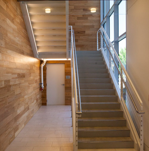 sustainable-wood-wall-paneling-m.jpg