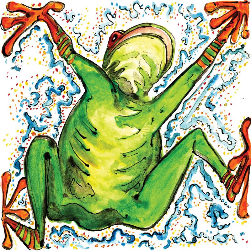 SP_frog_800px.jpg