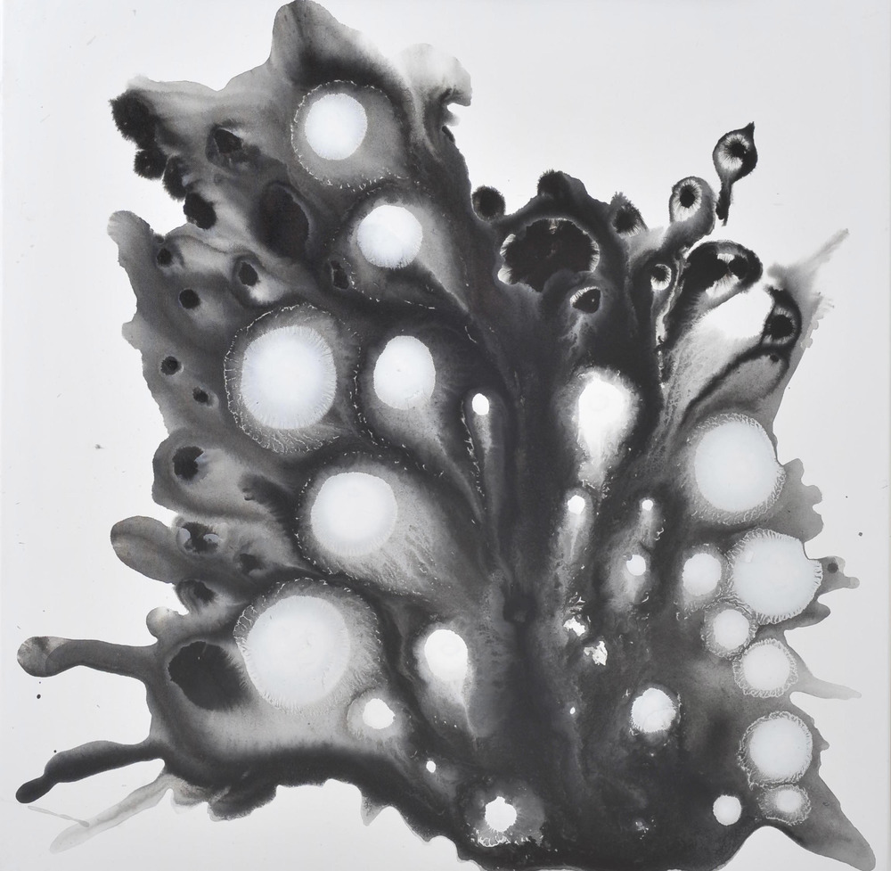Evoking no. 13, Ink and acrylic on canvas, 80 x 80 cm, 2010
