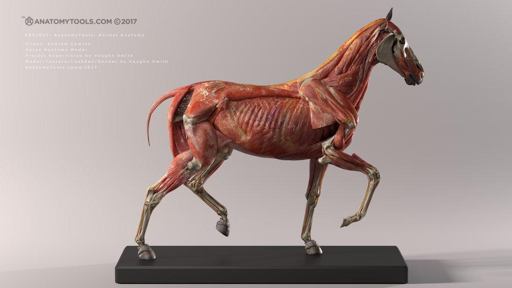 horse_v3_render_rvw_v01_withText_2K_WEBISTE.jpg
