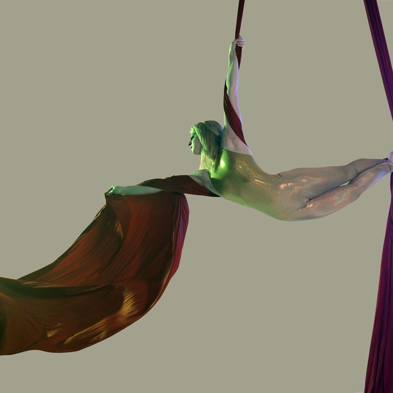 pearson aerialist