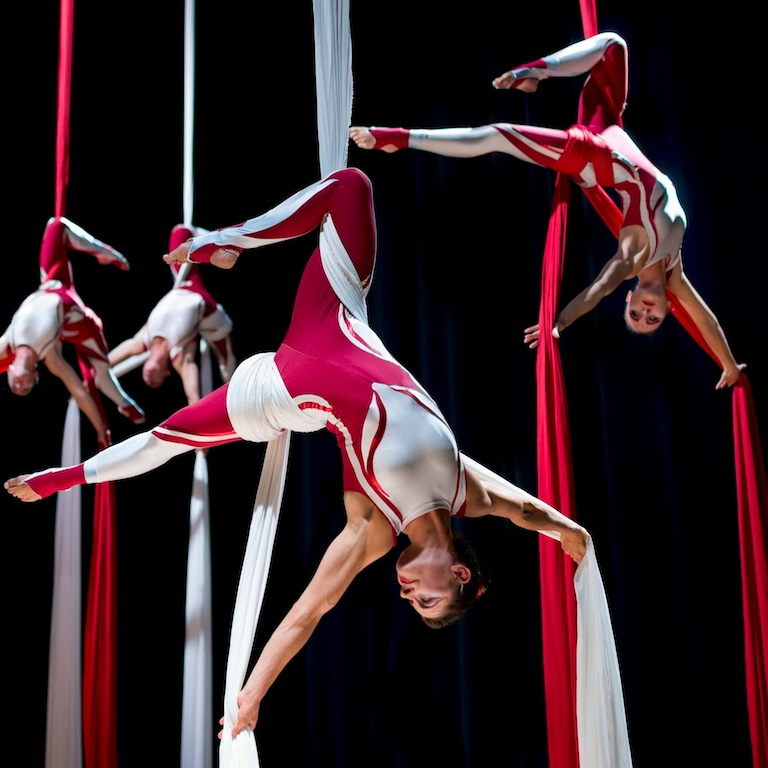 group silks
