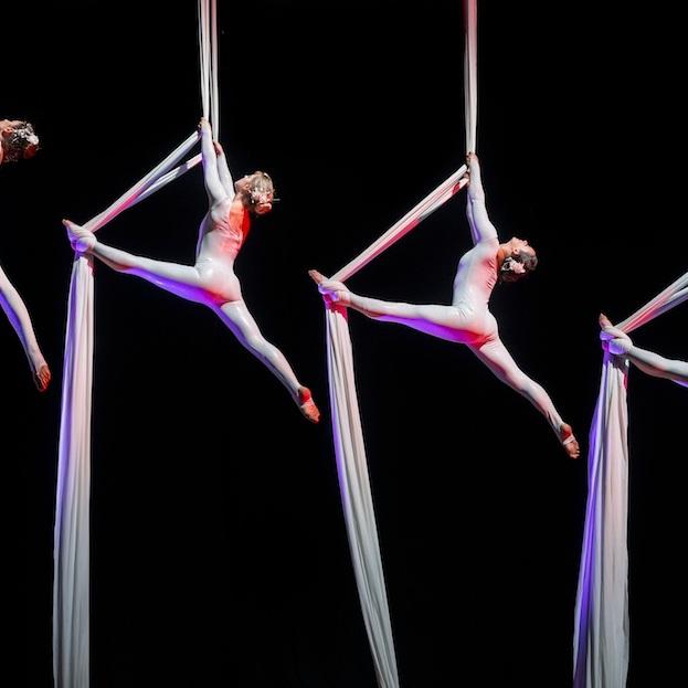 silks troupe