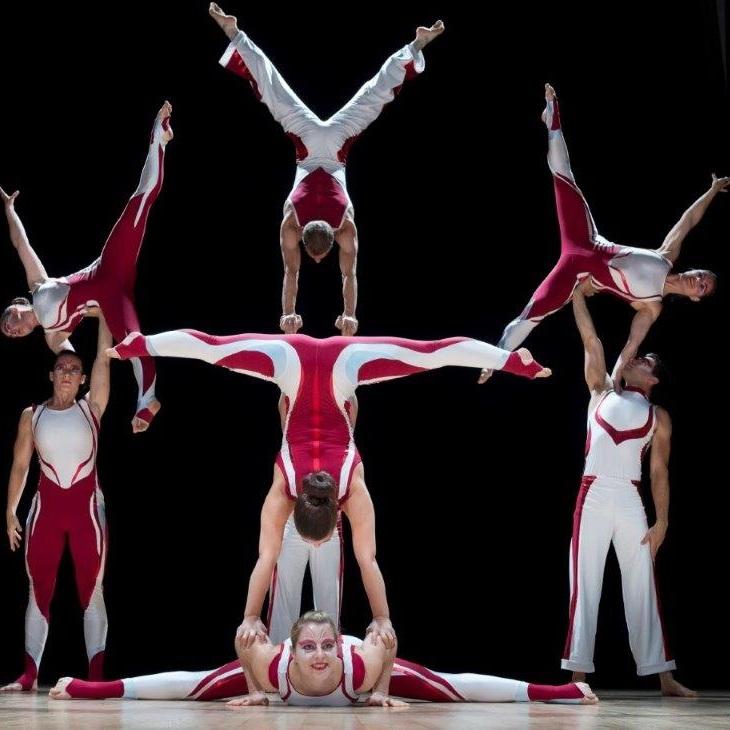 Acrobats, handbalencers, cyr wheel performers and more!