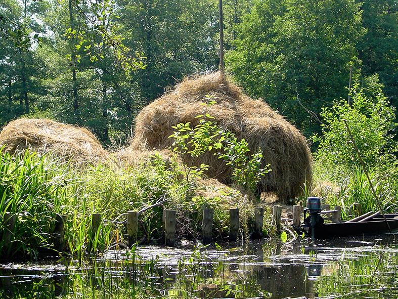 Bootshaus Kaupen Biosphärenreservat.jpg