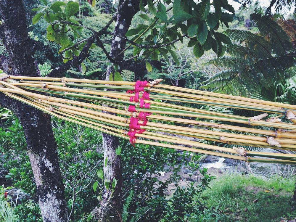 Bamboo4.JPG
