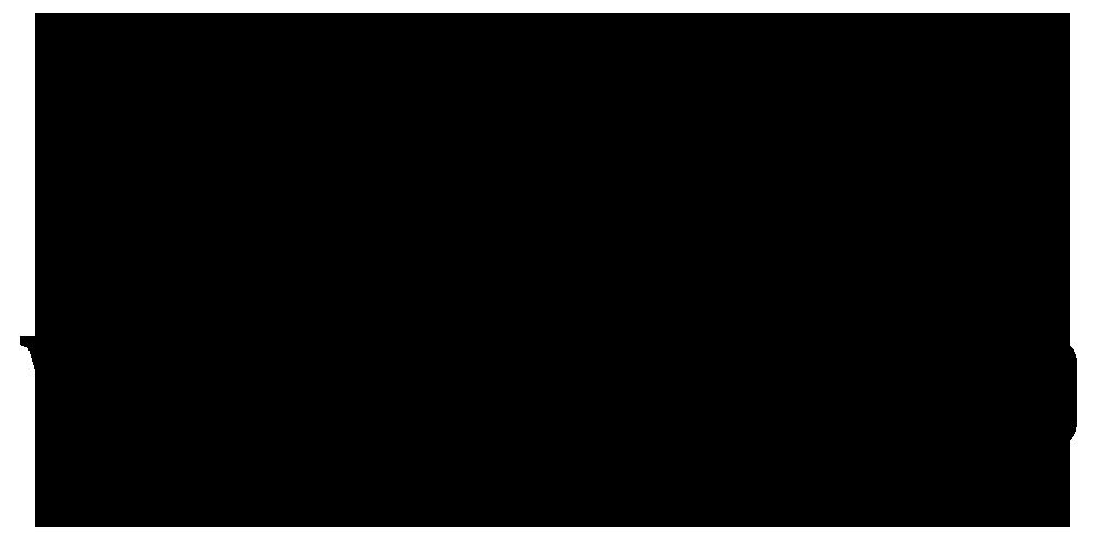 Logo Wild Shepherd Tours