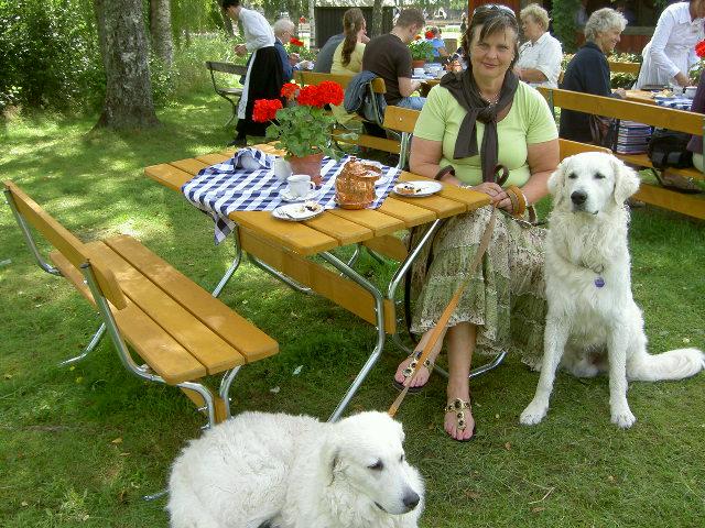 Gammelvala, Brunskogs Hembygdsgård