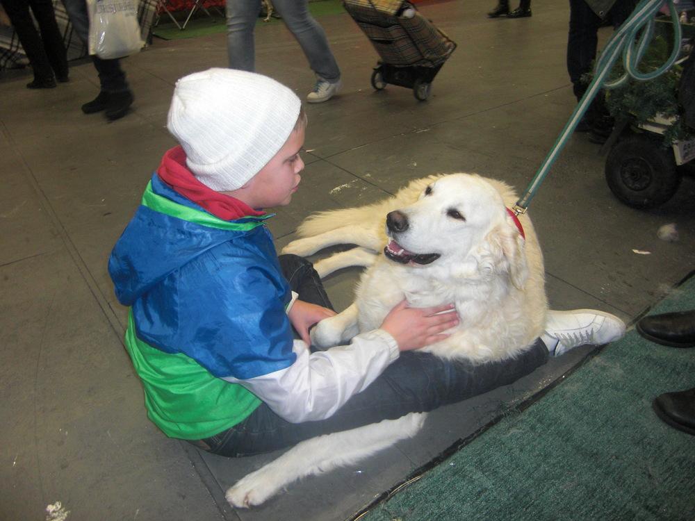 Hermész hittade en vän på Stockholms Hundmässa 2012.