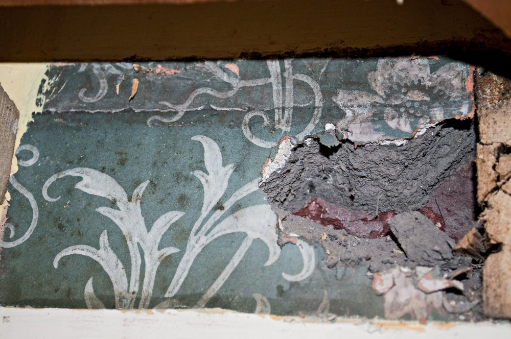 Another historic wallpaper fragment - this time in the cupboard of the second floor living room.  Could it date back to 1895?
