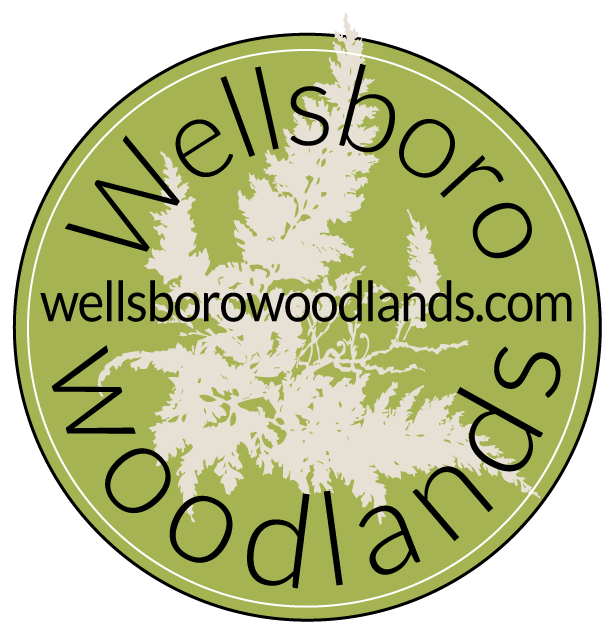 Wellsboro Woodlands, LLC