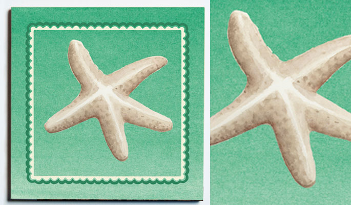 32098-WEB-SS-WHITE-STARFISH-TRIVET-.jpg