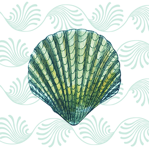 THE GREEN SHELL COLLECTION