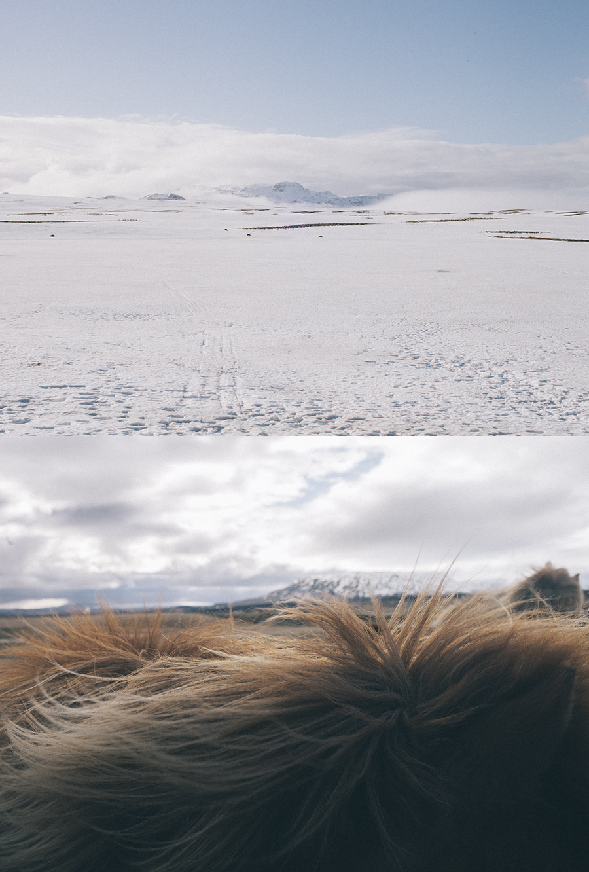 Iceland_2.jpg