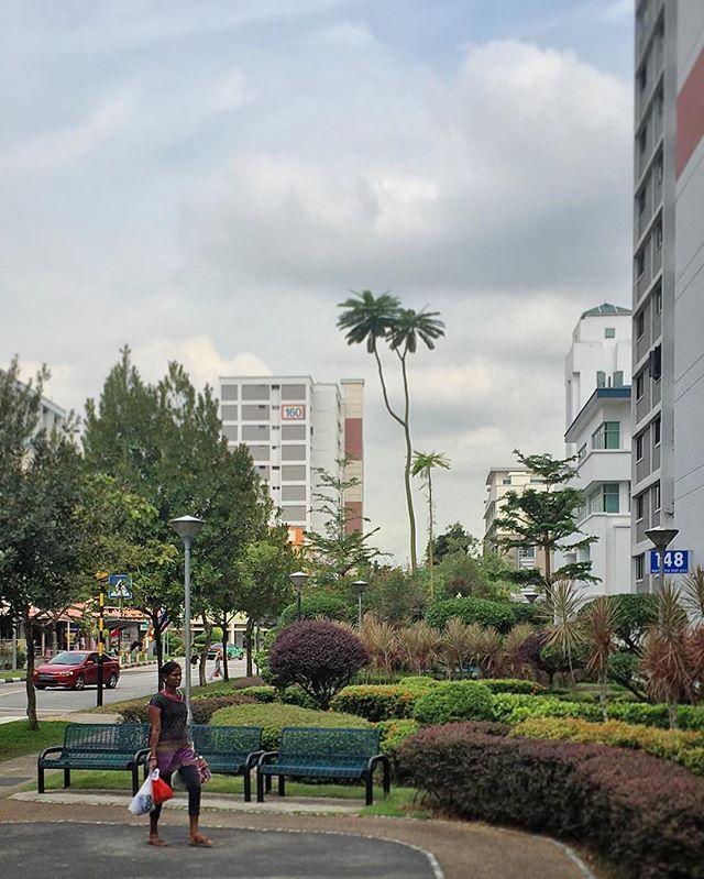#bukitbatok #hdb #sgheartlands #gardencity #gardencitysg #publichousing #architecture #sky #clouds #igsg #sgig #sgiger #singapore #instasg #instagood #instadaily #instastreet #street #streetphoto #streetphotography #wearethestreet #sgvsco #vsco #vscocam #vscophile #iphoneonly #everydayasia