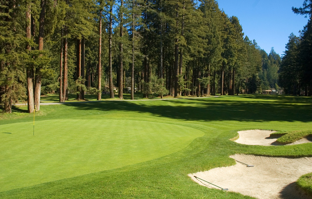 The narrow 464-yard, par 5, 5th hole plays straight as a bowling alley guarded by two lanes of Redwoods. © Robert Kaufman