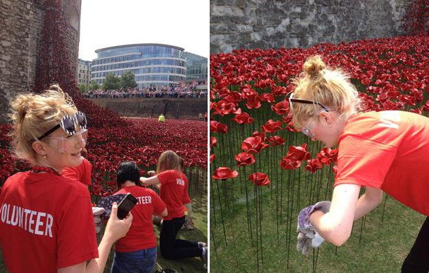 hannah kokoschka at tower poppies