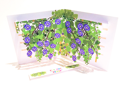 Morning Glory  Vine themed pop-up card (part of a set of six)  CLICK HERE TO PURCHASE