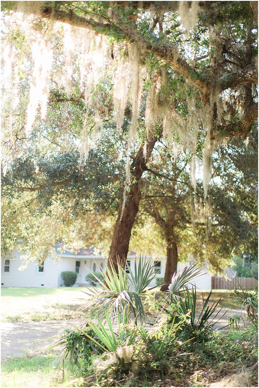 Charleston_Rowlo50.JPG